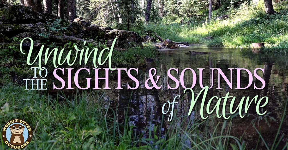 unwind to the outdoor sights and sounds of nature