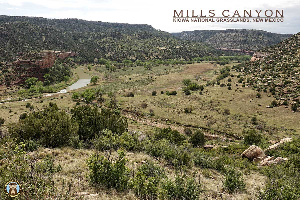 Mills Canyon in the Kiowa National Grasslands of New Mexico