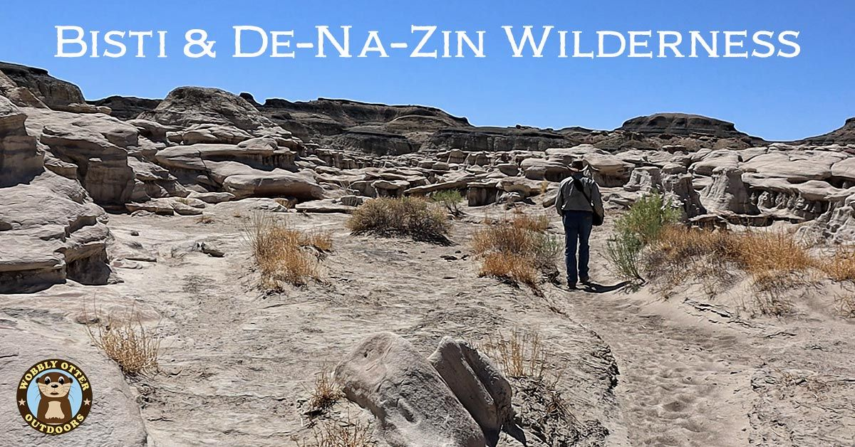 Bisti and De-Na-Zin Wildernes of New Mexico
