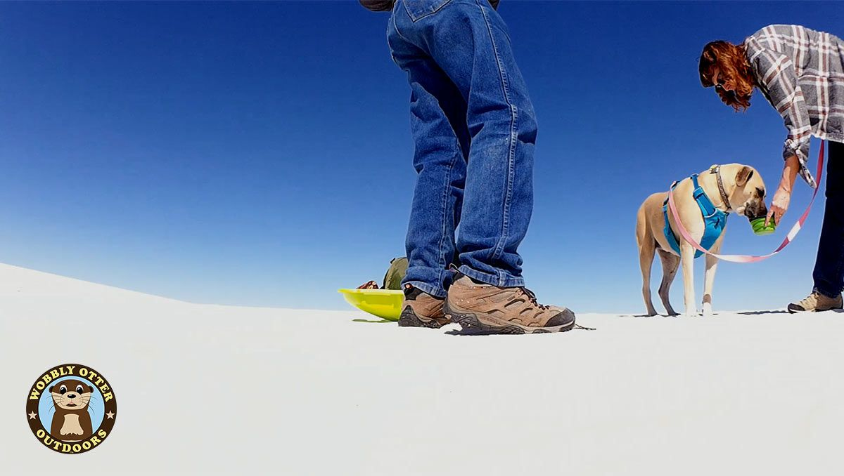 Water for the dog at White Sands National Monument
