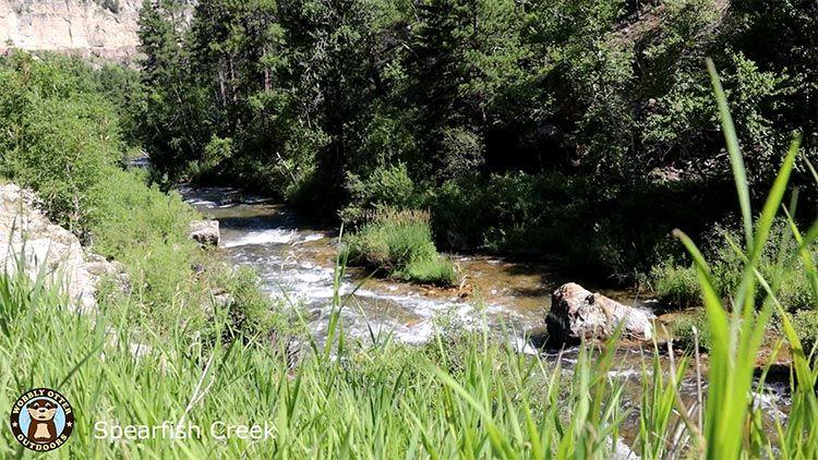 spearfish creek along canyon road